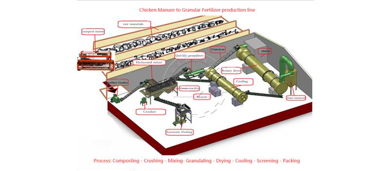 Organic chicken manure fertilizer production process